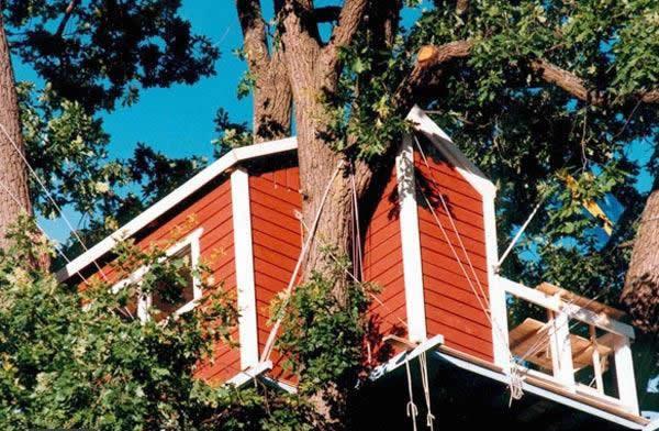 woodpecker hotel